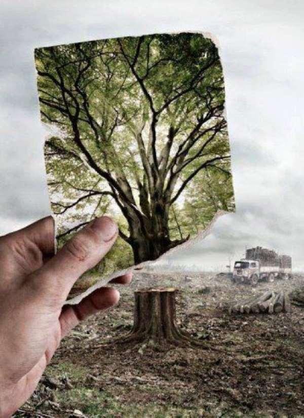 Our Suicidal War Against Nature