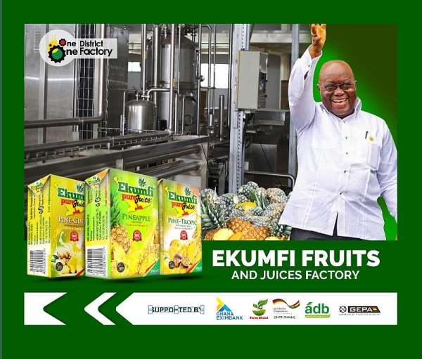 Akufo-Addo unveils golden opportunity to private sector