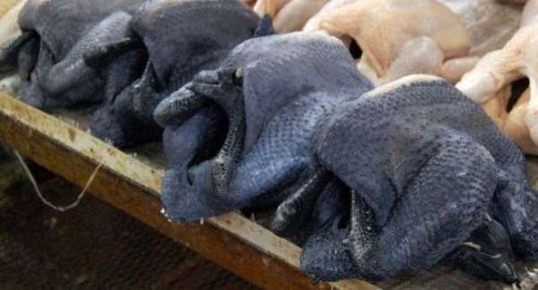 Why China Breeds Black Chicken?