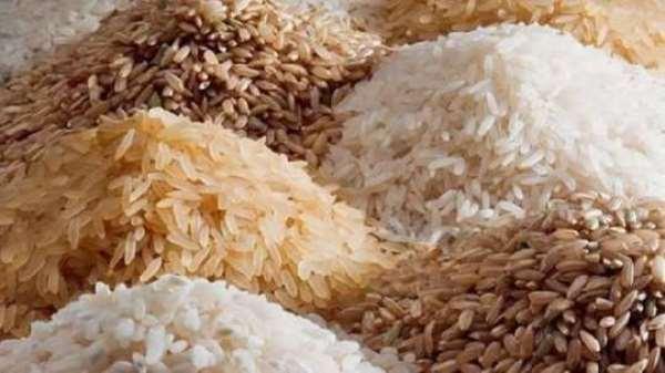 Northern Region: Rice Farmers Cry Foul Over Buyers' Exploitation