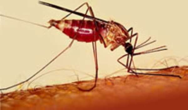 World Bank launches Malaria Booster II