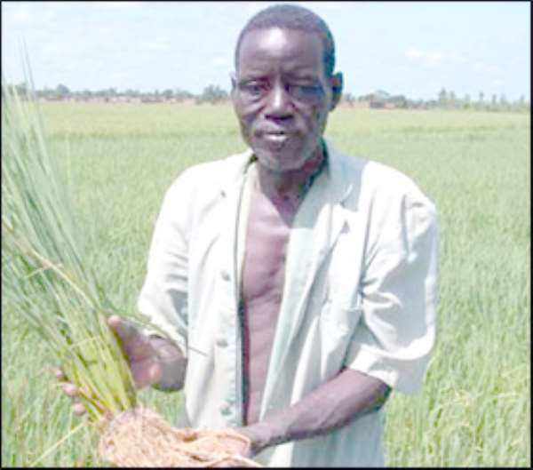 $800m For Agric Sector