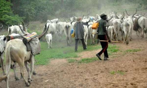 Zanj Revolt: Fulani Using Hausa Slaves To Terrorize Africans