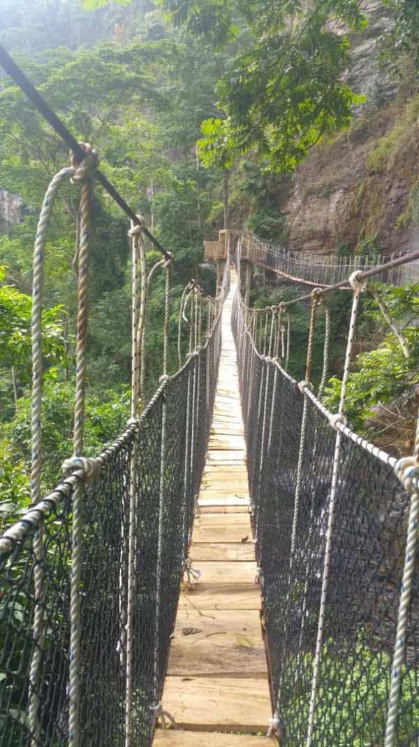 New Amedzofe Canopy Walkway to conserve the environment, boost ecotourism
