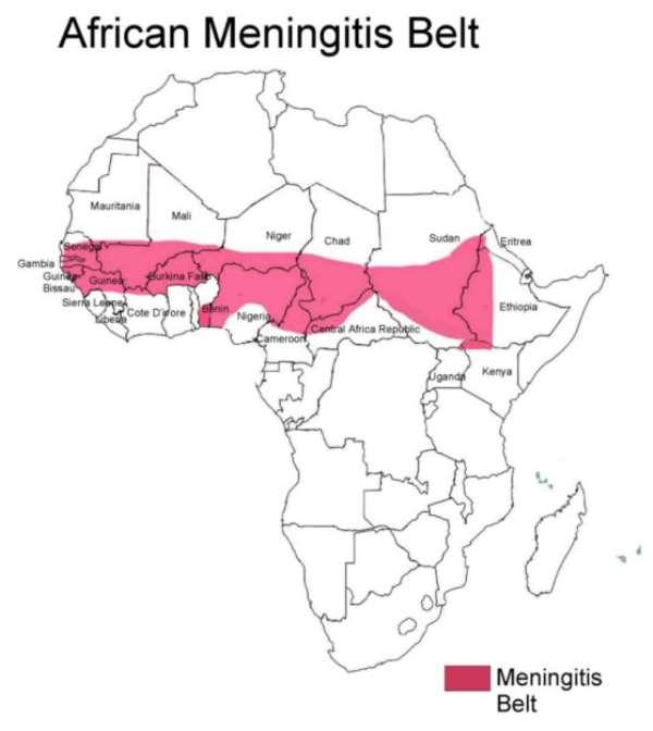 CerebroSpinal Meningitis,-Update