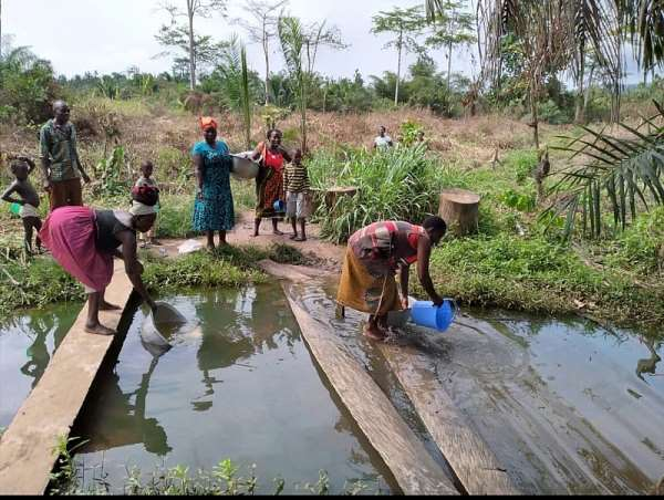 Environmental Protection: A letter to the Government of Ghana