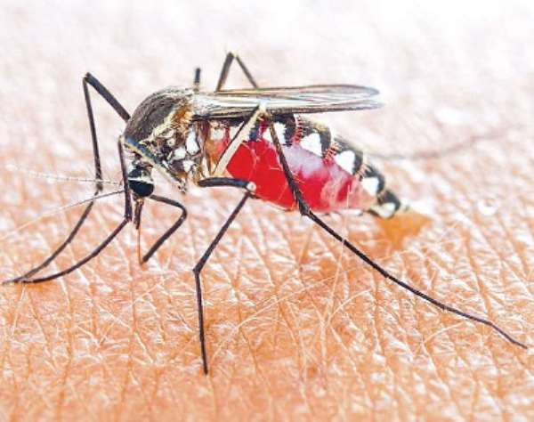 Malaria: People living near dams demand periodic spraying, fumigation