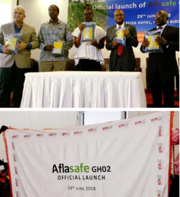 Aflasafe unveiled! Showing off packs of Aflasafe GH02 at its launch in Accra, Ghana are (left to right, above): Dr Ranajit Bandyopadhyay, Principal Scientist (Plant Pathology) and Research Leader of the Africa-wide Aflasafe Initiative at IITA; Dr Seydou Samake, the USDA and USAID Regional Sanitary and Phytosanitary Policy Advisor; Mr Harry Blepony, Deputy Director of Crop Services at the Ministry of Food and Agriculture, representing Dr Owusu Afriyie Akoto, the Minister for Food and Agriculture;