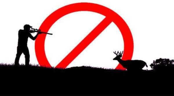 Hunting, Capturing Of Wild Animals Ban Begins On August 1