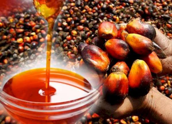 Palm oil goes digital to curtail the menace of Sudan IV