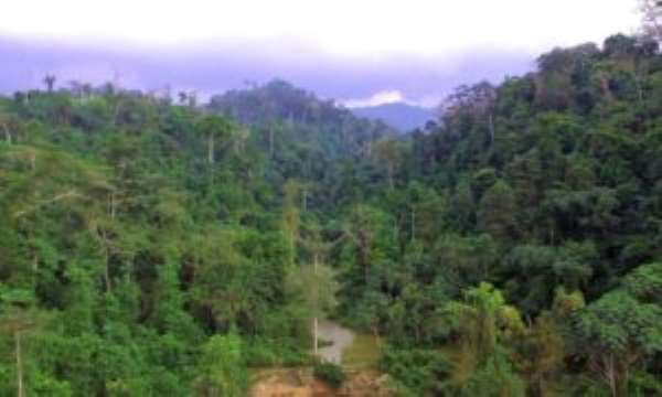 Don't Use Atiwa Forest To Mine Bauxite