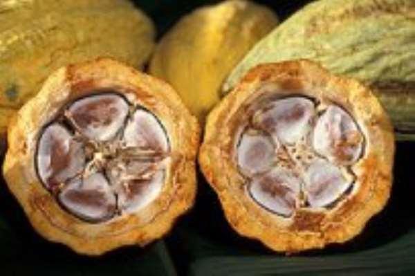 China, India, Iran seek to buy Ghana cocoa direct