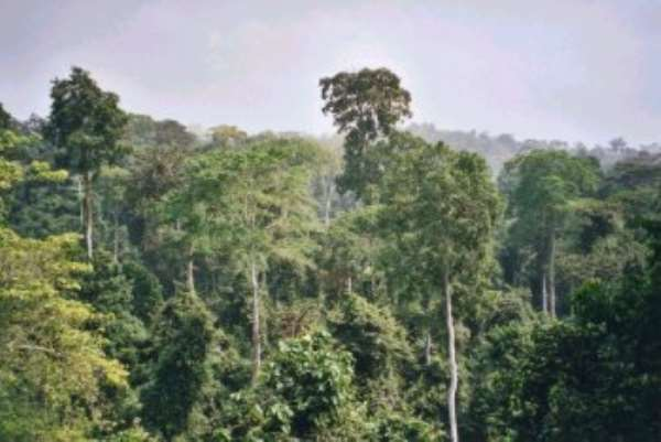 Thirty Forest Reserves are