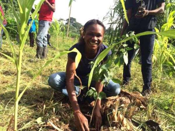 Trees Aid Planting 900,000 Trees Along Yendi Dakar River