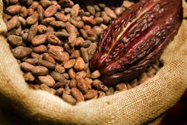 Ghana's Ambassador To China Fight For Tariff-Free Entry Of Ghana's Cocoa Products Into Chinese Market
