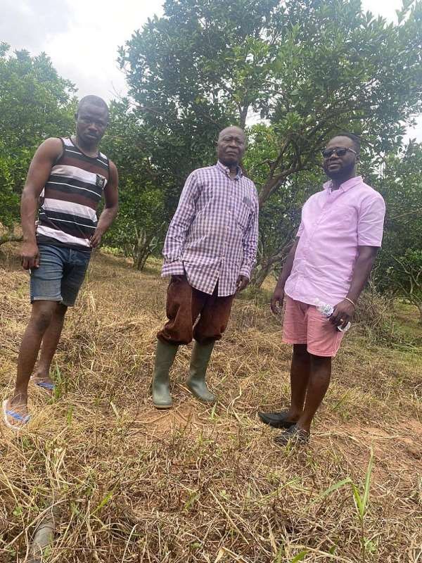 Offinso North: Big Boost For Farmers As Former NDC Parliamentary Aspirant Brings In Massive Patronage To Farming