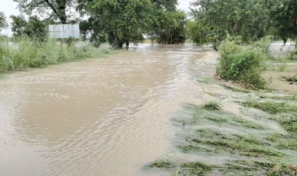 Farmlands in northern Ghana submerged in floods, Credit:  graphic.com.gh