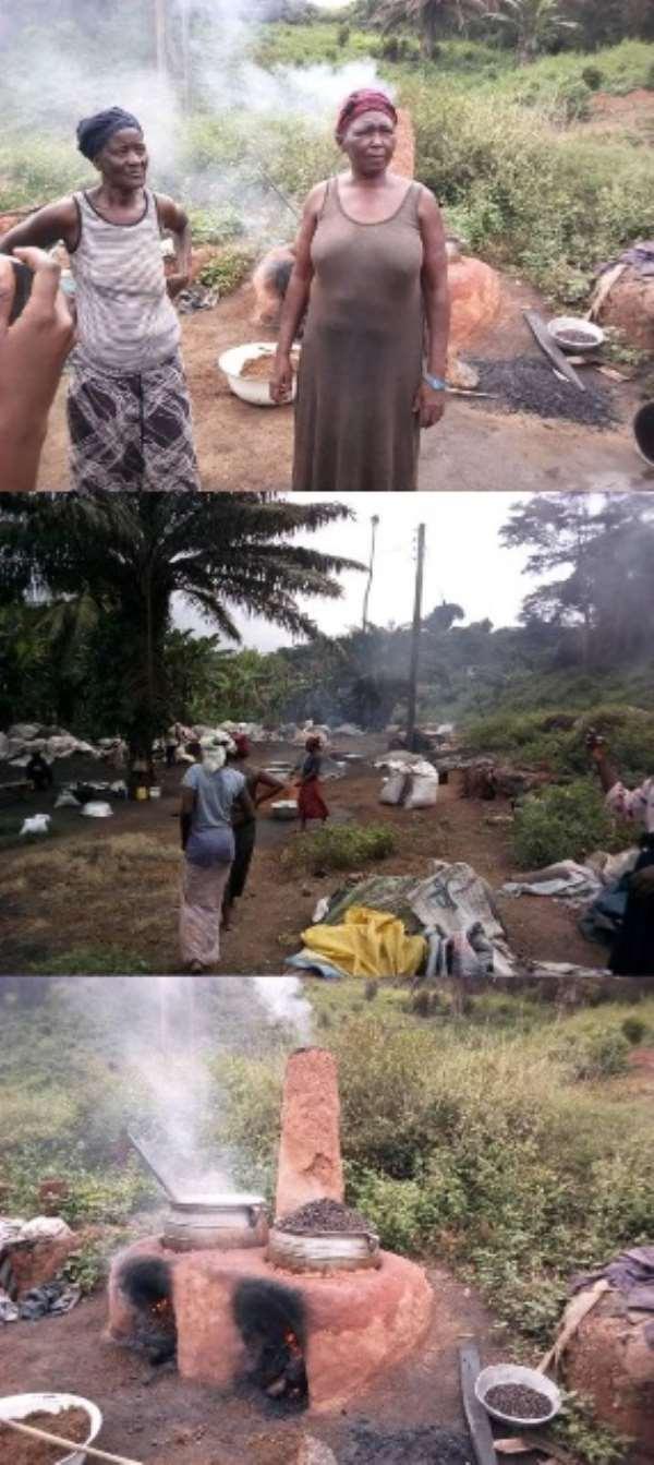 Palm Kernel Oil Producers Lament Over Market