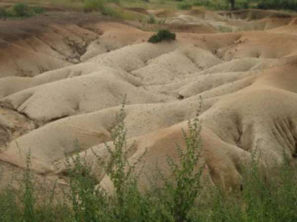 World Day To Combat Desertification 2013; Theme: Don't Let Our Future Dry Up