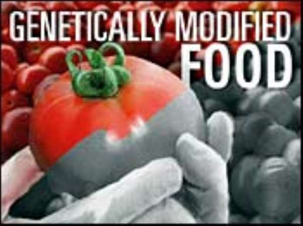 GM Foods threaten food security and sovereignty - Action Aid