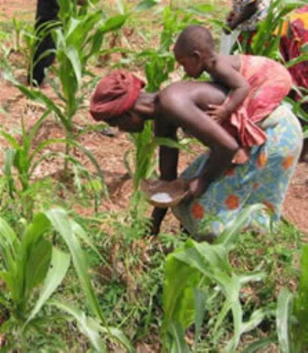 Statement:  Akufo-Addo salutes farmers