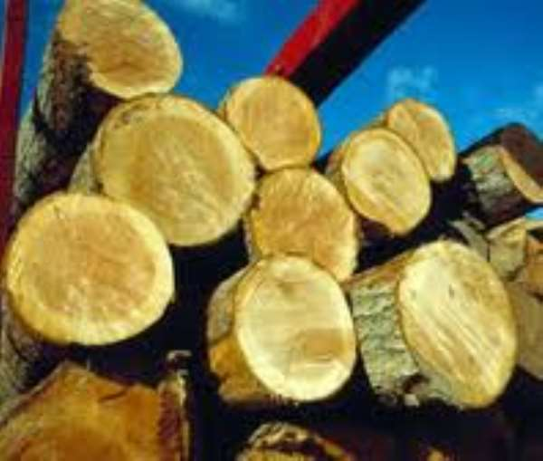 Timber Association Welcomes Dismantling Of Lumber Checkpoints