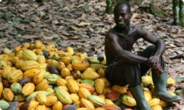 Armajaro inaugurates new cocoa warehouse