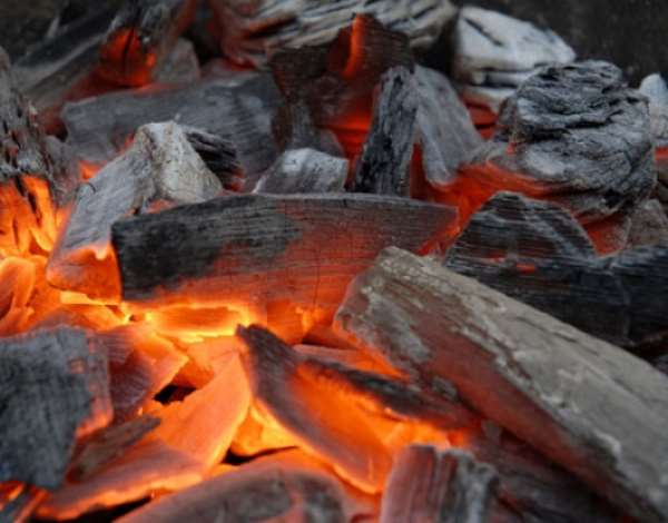 Speed up policy on charcoal — Forum participants