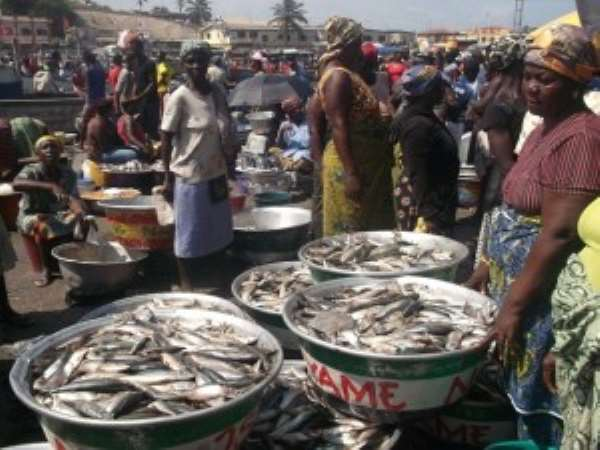 Landing Committee Gives Loans To Fishmongers