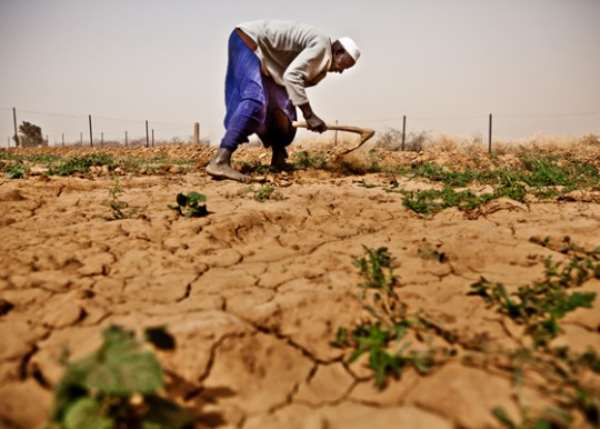 FOOD INSECURITY IN AFRICA: Can we feed the world?