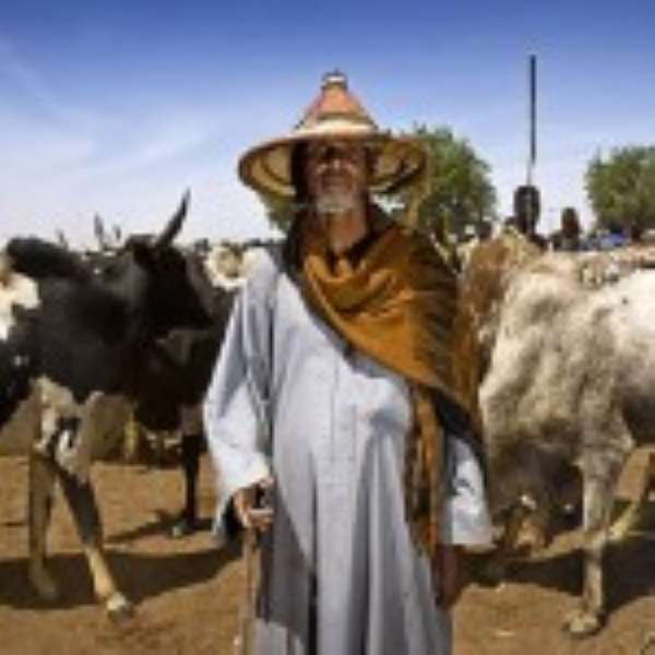 Daring The Nomads