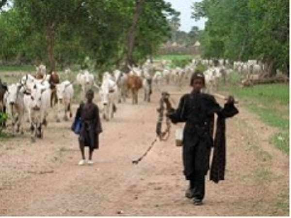 Who Are the Fulani People & Their Origins?