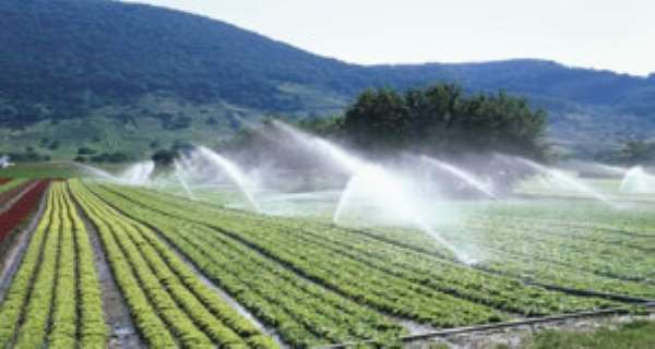 Ghana's Irrigation Potential Remains Untapped