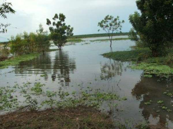 Changes in Weather Patterns – what can farmers do?