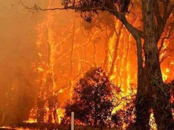 Youths of Nkoranza North District to prevent bushfires