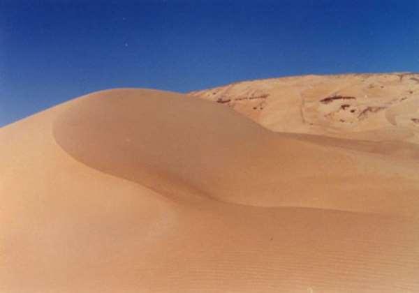 Wickedness Killed the Desert Ghanaians (5)