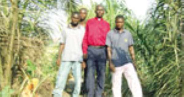 PASTOR CUTS WITCH TREE •Chiefs Chop ¢90m Free