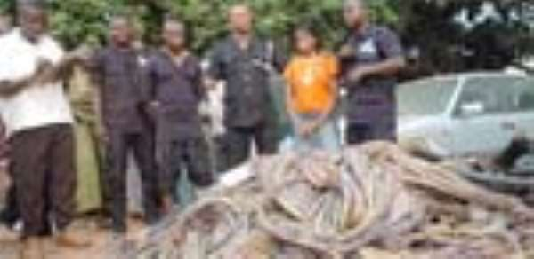 Cable Thieves Busted