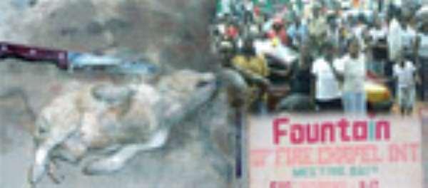 I Buried Dog Alive•Says Prophet Nti Boahen