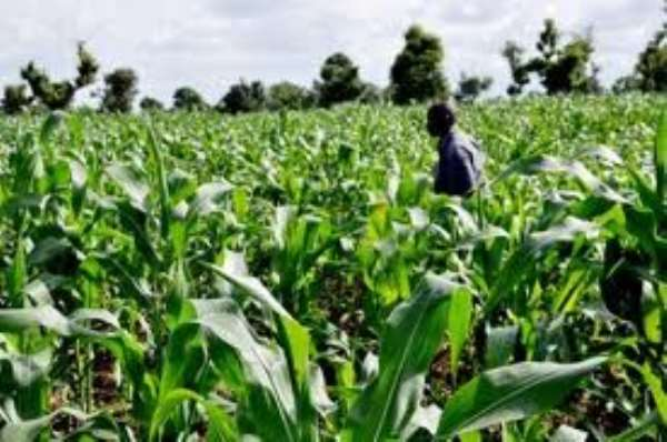 One Community, One Dam Policy is Key to Sustainable Agriculture Growth and Development in Ghana