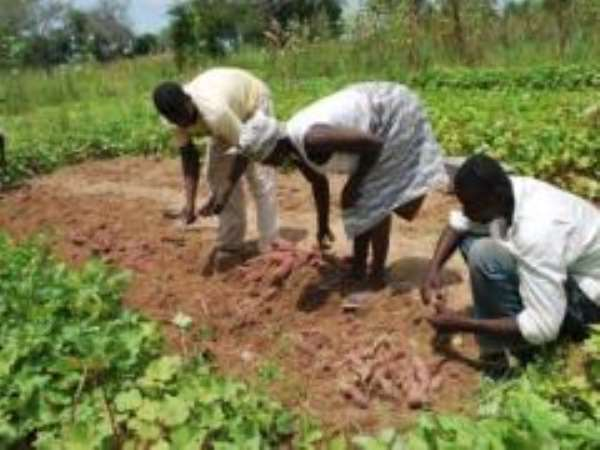 AGRA to help implement new G8 Global Partnership Initiative on Food Security