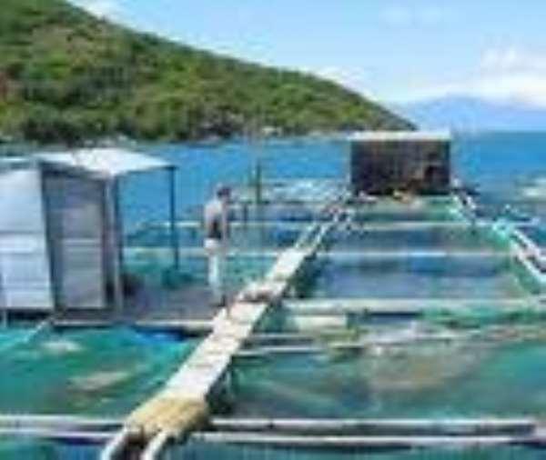 Ghana and Israel sign Aquaculture agreement