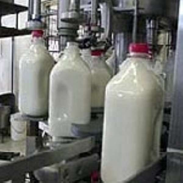 Two billion-cedi milk processing factory for Juapong