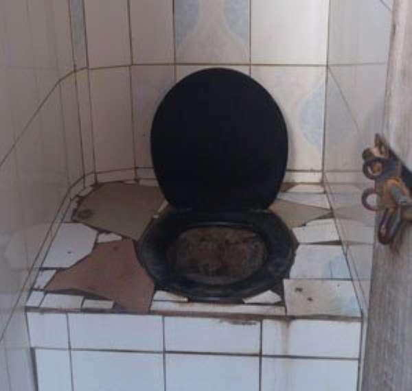 The pit latrine of Greater Care International School Nima.