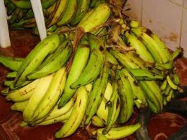 Unemployed fined GH¢200 for stealing GH¢10.00 plantain