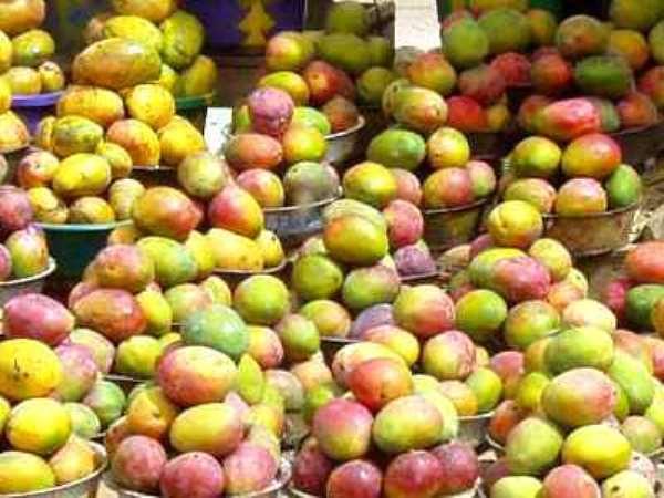Mango Farmers Attend Workshop At Techiman