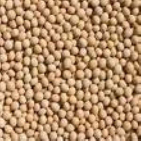 Bolgatanga seed warehouse in Danger