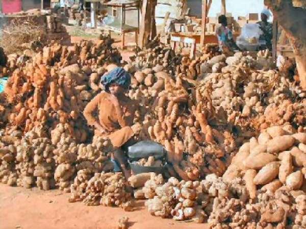African Common Market