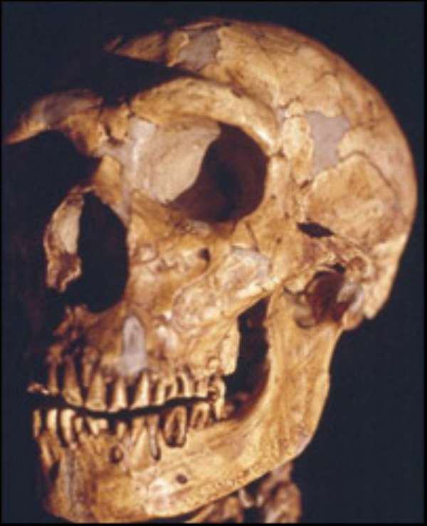 Tooth gives up oldest human DNA