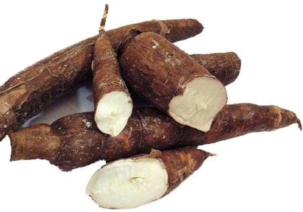 Nigeria And International Partners Flag Off Dissemination Of ProVitamin 'A' Cassava Varieties